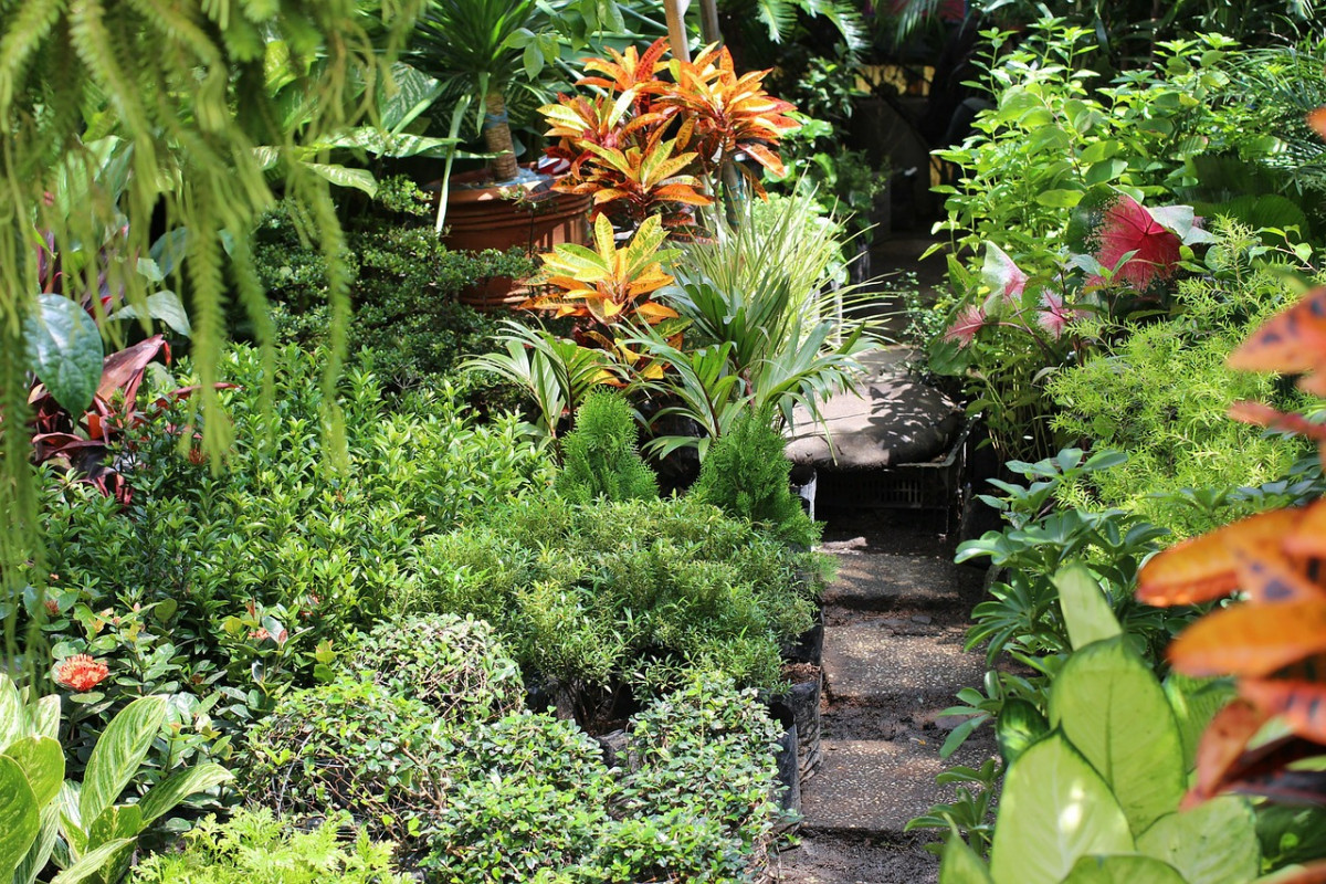 garden-72054_1280